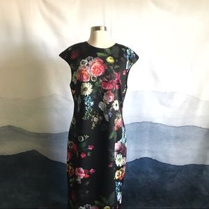 Ted Baker Cathina Pencil Dress Oil Painting Print